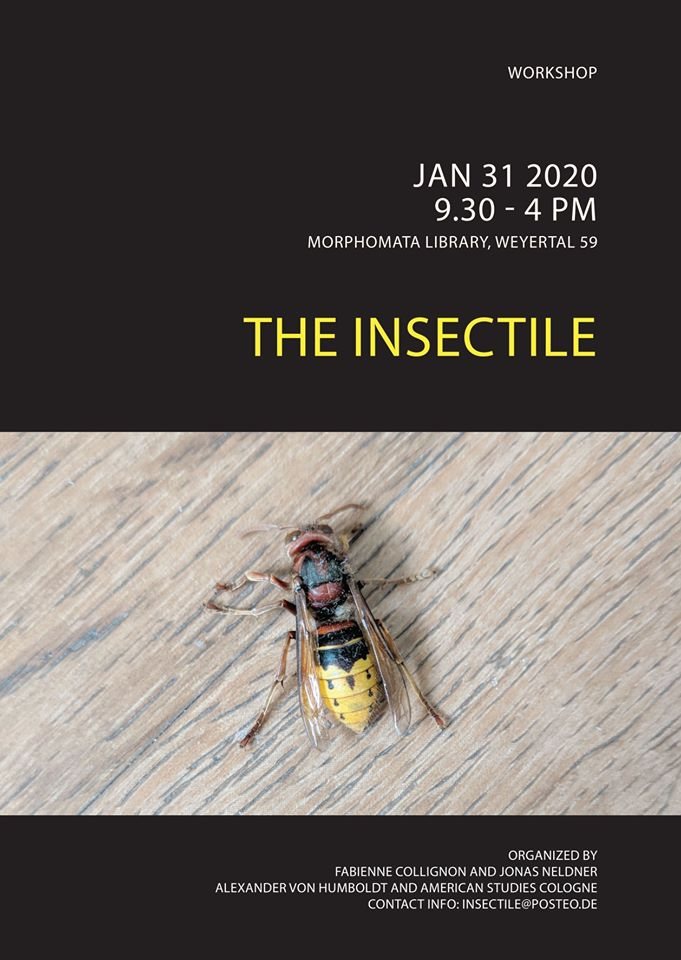 The Insectile